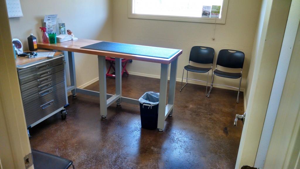 Cat Exam Room
